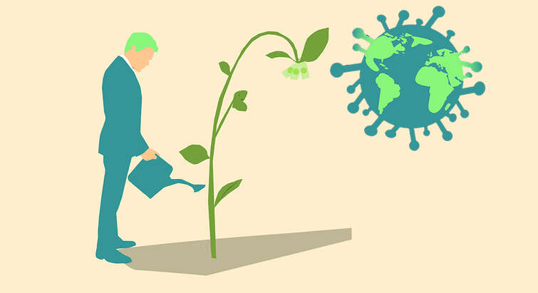 Illustration of a person in a business suit watering a plant sprouting money. The sun is a globe in the shape of a coronavirus.