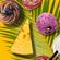 Summer School in Food Regulatory Affairs
